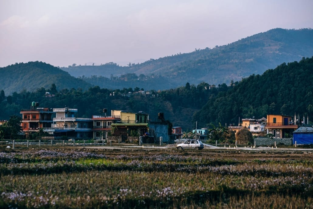 Agriculture Asia with houses in background