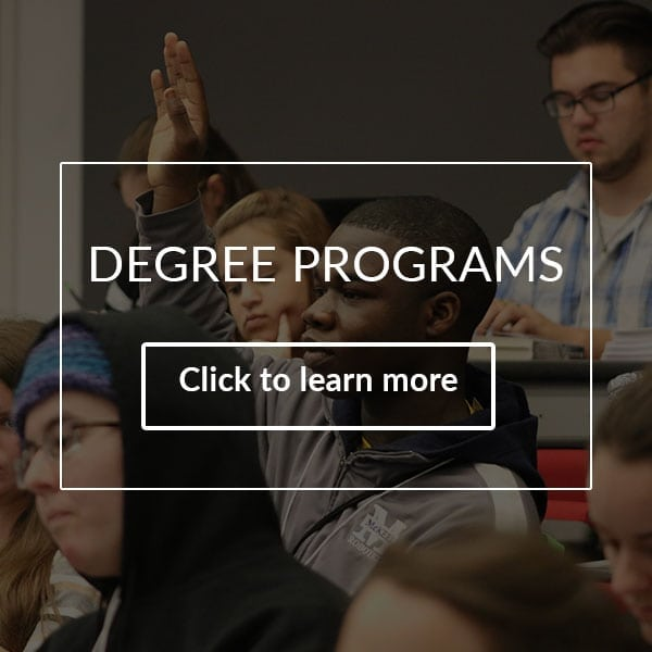 humanities degree has a student raising his hand during a class discussion